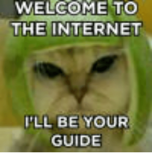 guide to the internet meme
