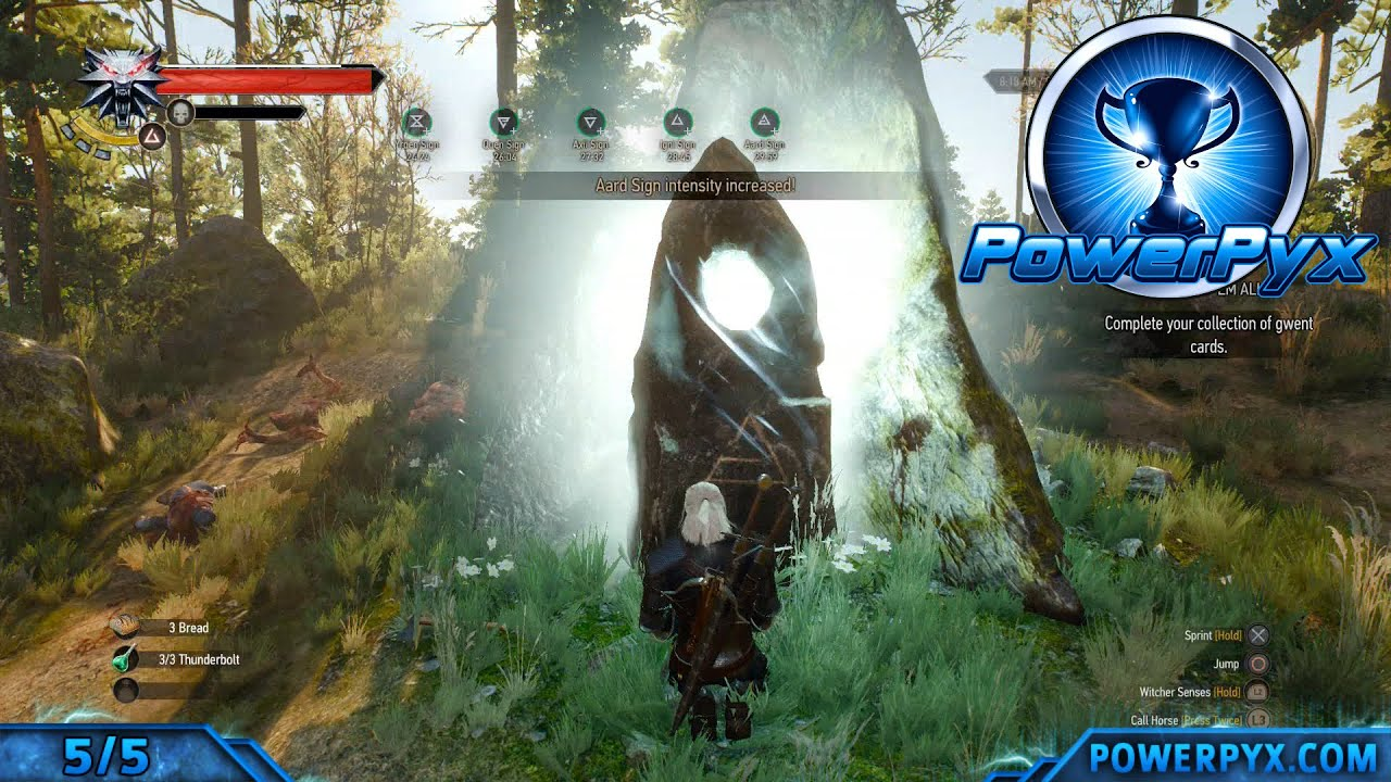 the witcher 3 ps trophy guide