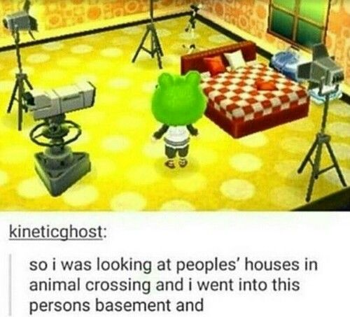 animal crossing wild world appearance guide