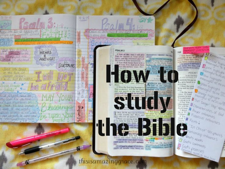 free bible study guide for beginners