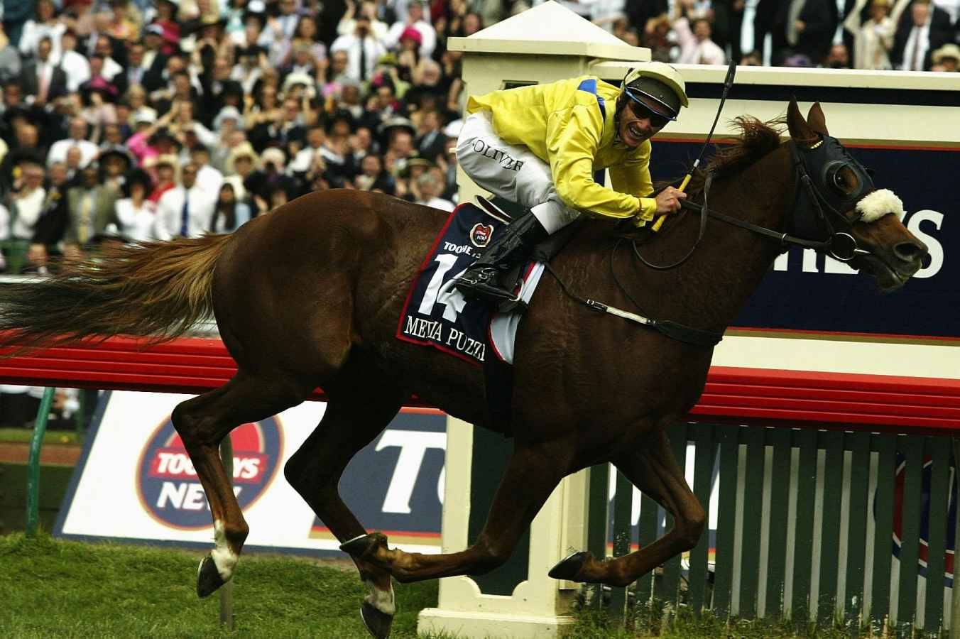 melbourne cup horses 20017 form guide